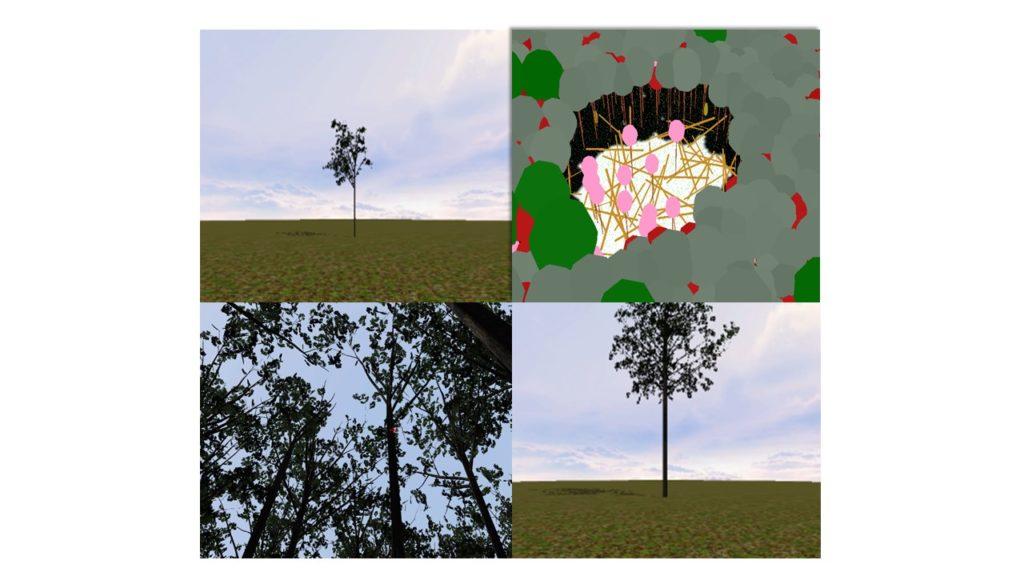 L'attribut alt de cette image est vide, son nom de fichier est Réunion-essai-prototype-fev-2019-1024x576.jpg.